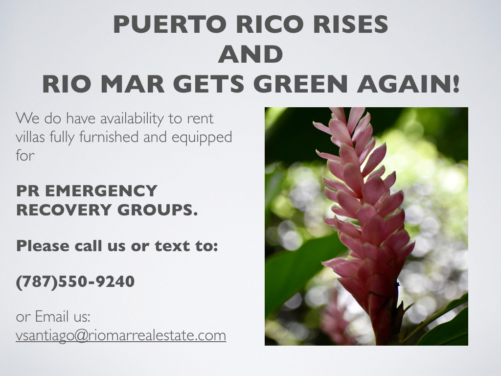 PR EMERGENCY RECOVERY GROUPS AD.001